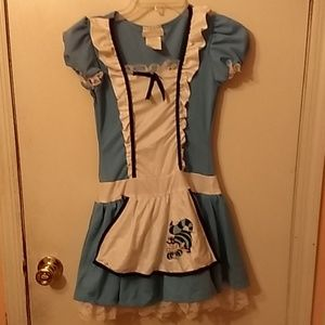 Girls Halloween costume Alice from wonderland